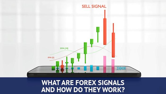 forex auto trading signals 1